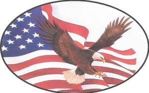 eagle-with-flag-oval